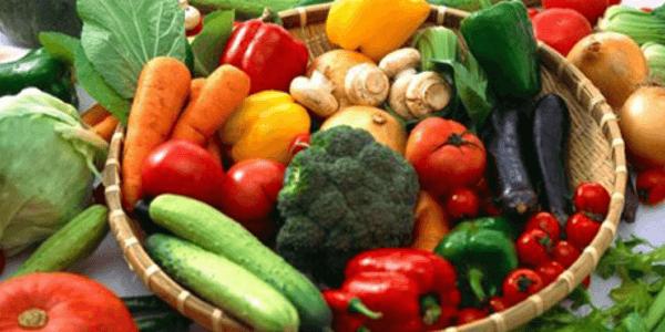 Pemahaman Budidaya Hortikultura Secara Organik1